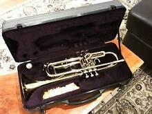 Norton Trumpet Balgowlah Manly Area Preview
