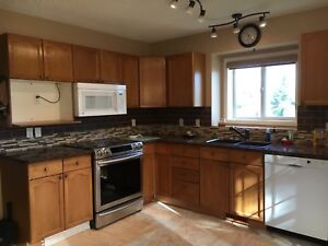 Kitchen Cabinets (lower only)