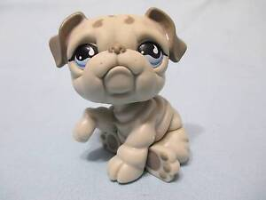 Littlest Pet Shop #508 Gray Bulldog Puppy Blue Eyes Teardrop Eyes 100% Authentic
