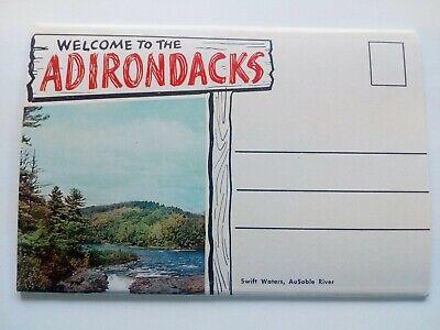 Adirondack Postcard Souvenir Foldout Lake George NY Folder 1950s Souvenir Postcard Folder