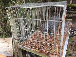 Steel Dog cage