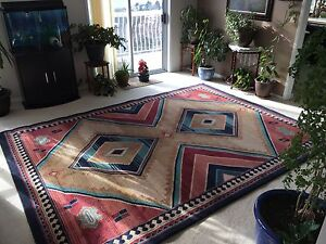 Area Rug -Great Condition  10.5ft x 8ft  $150 OBO
