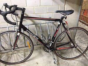Trek Alpha 1.2 road bike, XL, 62 cm frame Cremorne North Sydney Area Preview