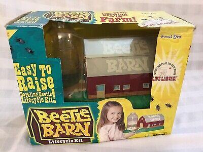 INSECT LORE Original Beetle Barn Science Educational Kit