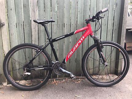 Avanti Bicycle mountain/city size medium