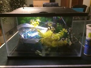Fish Tank with all Accessories