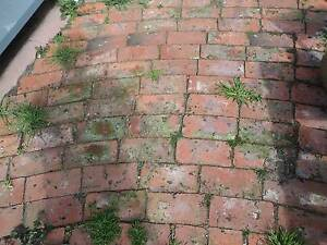 850 OLD RED bricks....excellent condition....On Pallets Adelaide CBD Adelaide City Preview