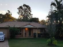 Room for rent in Coopers Plains Coopers Plains Brisbane South West Preview
