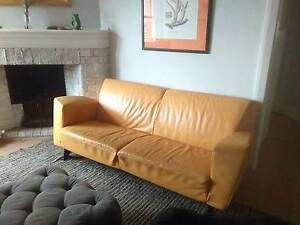 Yellow Italian leather lounge Manly Vale Manly Area Preview