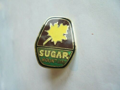 Vintage Sugar Mountain Ski Resort Area North Carolina Enamel Souvenir Pin