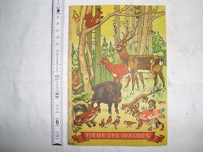 Bilderbuch , Tiere des Waldes , Wort u. Bild Niedersedlitz