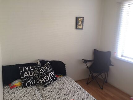 Room available in Dee Why Dee Why Manly Area Preview