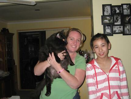 Room wanted for International Students! Homestay Families wanted! Southport Gold Coast City Preview