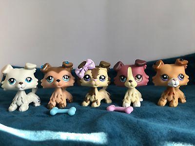 5× Littlest Pet Shop LPS Collie Dogs #2210 #1676 #1262 #2452 #363 Authentic Rare