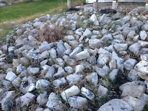 Garden decorative rock