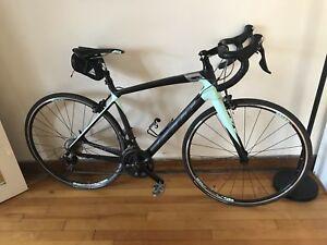 Women Felt road bike FW5 - Tall size
