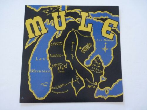 Mule Band LP Record Photo Flat 12x12 Poster