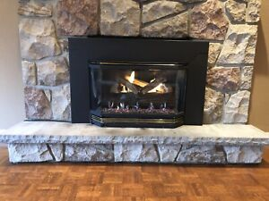 Classic Iron Electric Wood stove
