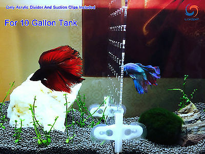 "10 Gallon 9.8""x11"" Tank Aquarium Acrylic Divider With Holes 4 Suction Clips"