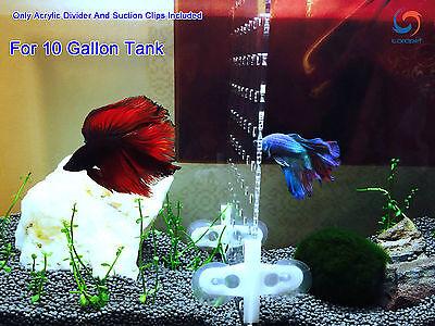 "10 Gallon 9.8""x11"" Tank Aquarium Acrylic Divider With Holes 4 Suction Clips"