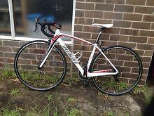 2011 Specialised Amira Comp Womens Road Bike Randwick Eastern Suburbs Preview