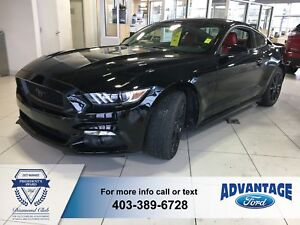 2016 Ford Mustang GT Premium Low Km's - Advanctrac Control -R...