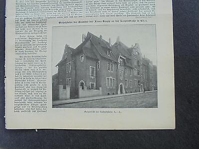 1909 Baugewerkszeitung 99 / Essen Kaupenstraße / Zänkert aus Frankfurt Oder