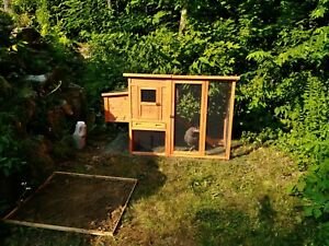 Freddie Chicken Coop with run & nesting box
