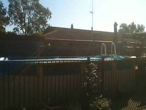 Swimming Pool Traralgon Latrobe Valley Preview