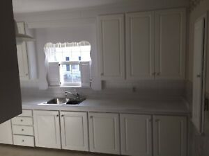 Kitchen cabinets counter top double sink