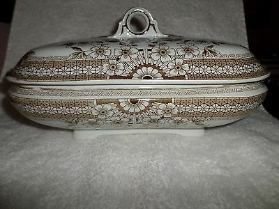 Antique Foley A F & Co COVERED VEGETABLE Brown Aesthetic Staffordshire Crown #20