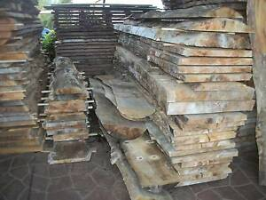 NORFOLK ISLAND PINE TIMBER SLABS - 2.4 to 3.8 mtrs x 40cm-80cm Panania Bankstown Area Preview