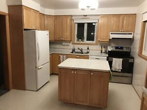 Oak Kitchen Cabinets and Countertop