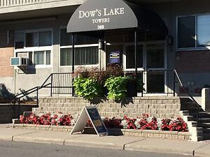 August Bachelor Apartment $899- DOWNTOWN/CARLETON