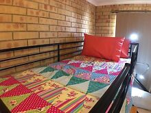 Light, female only shared room, incl 2 meals, cleaning Bundaberg South Bundaberg City Preview