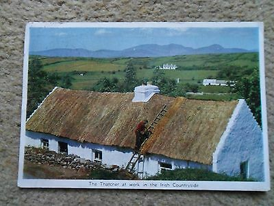 POSTCARD.CARDALL.THE THATCHER AT WORK IN THE IRISH COUNTRYSIDE.POSTED 10.8.1961.