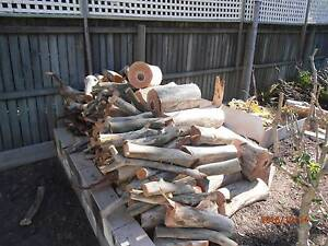 FIREWOOD FOR NEXT WINTER Chermside West Brisbane North East Preview