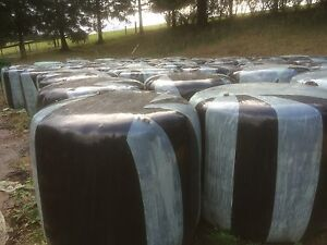Silage feed for cows,like round bales of hay for farming Baw Baw Area Preview