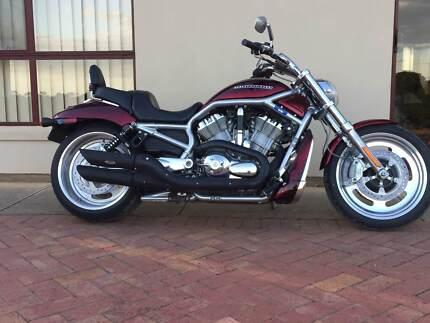 Harley Davidson VROD 2007 Model