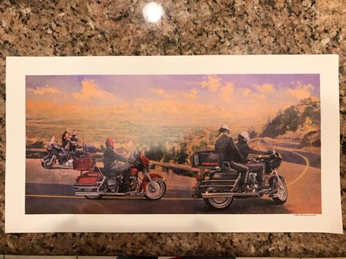 Vintage 1980 AMF Harley Davidson by Hunter Print Copies