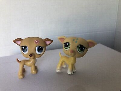 Littlest Pet Shop Lot Dog Greyhound Whippet 875 498 Set Authentic Lps
