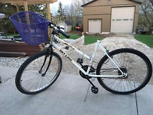 Old Bicycle For Sale