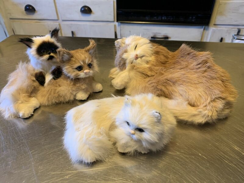 Lot Of Real Fur Cats