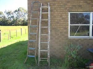 Painters Ladders Haddon Golden Plains Preview
