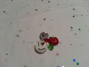 TEACHING TEACHER CHARM LOT FOR LIVING MEMORY GLASS LOCKET FLOATING CHARMS #57