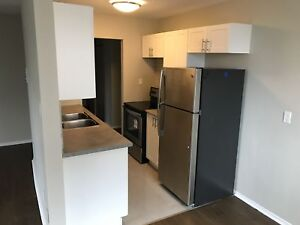 Renovated 2 Bedroom Suite - Close To All Amenities
