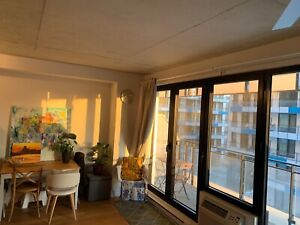 Luxurious studio for rent-Lowney Griffintown-July 1st