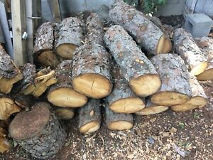 Wood for Campfire