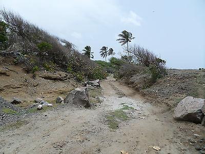 Grundstück Karibik Grenada direkte Strandlage Palmen Strand Surfen Beach