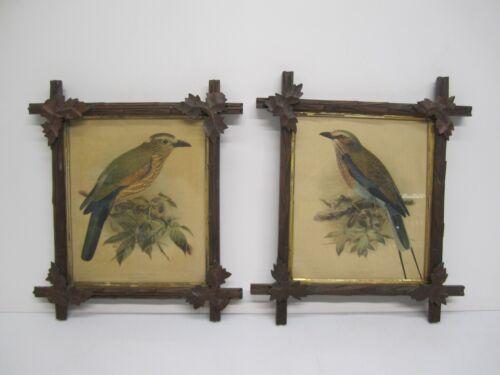2 Vtg Bird Litho Lithograph Art Prints 10x12 & Carved Wood Black Forest Frames